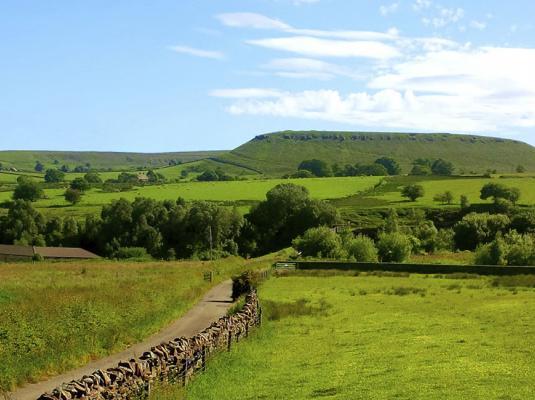 The Meadows.